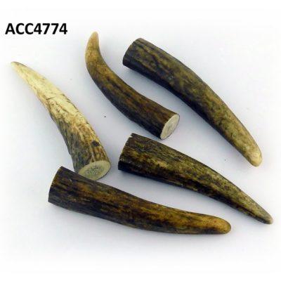 Puntas de ciervo, Asta de Ciervo, gamo y corzo, International Antler Trading SL